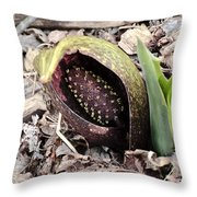 Skunk Cabbage Baby Aka  Polecat Weed Throw Pillow
