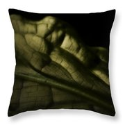 Skunk Cabbage Leaf Throw Pillow