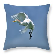 Sky Dancing Throw Pillow