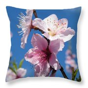 Sky High Cherry Blossoms Throw Pillow