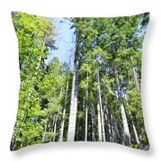 Sky High Throw Pillow