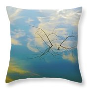 Sky On Water Throw Pillow by Brian Wallace