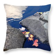 Sky Reflection Leaves And Rocks Throw Pillow