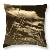 Sky Writer Throw Pillow