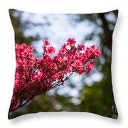 Skylit Blooms Throw Pillow