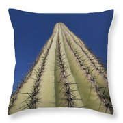 Skyward View Of A Saguaro Cactus Throw Pillow