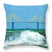 Skyway Splash Throw Pillow by David Lee Thompson