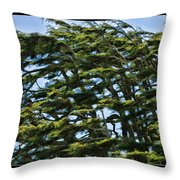Slanted Branches Throw Pillow