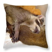 Sleep Buddies Throw Pillow