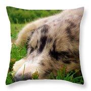 Sleep Is Good Throw Pillow