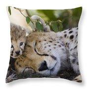 Sleeping Cheetah And Cub Kenya Throw Pillow
