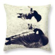 Sleeping Ducks Throw Pillow