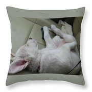 Sleeping In The Front Seat Throw Pillow