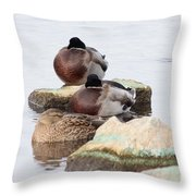 Sleeping Mallards Throw Pillow