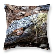 Sleeping Monster Throw Pillow