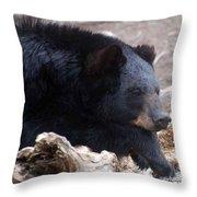Sleepy Black Bear Throw Pillow