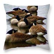 Sleepy Geese Throw Pillow