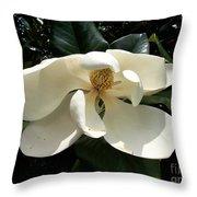 Sleepy Head Magnolia Throw Pillow