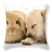 Sleepy Puppy And Rabbit Throw Pillow