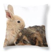 Sleepy Yorkipoo Pup With Baby Sandy Throw Pillow