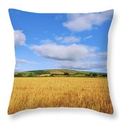 Slieveardagh Hills, Co Kilkenny Throw Pillow