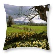 Slievenamon, Ardsallagh, Co Tipperary Throw Pillow