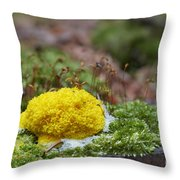 Slime Mould Throw Pillow