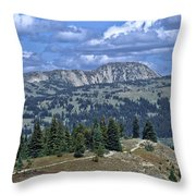 Slocan Valley Throw Pillow