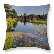 Slow Snake River Throw Pillow
