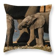 Small And Big Throw Pillow