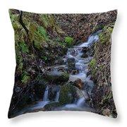 Small Creek Throw Pillow