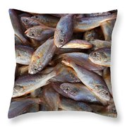Small Edible Fish For Sale Throw Pillow
