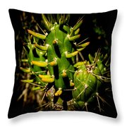 Small Green Cactus Throw Pillow