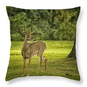 Small Stag Throw Pillow