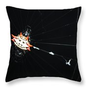 Smiley Crab Spider Throw Pillow
