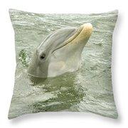 Smiling Dolphin Throw Pillow