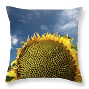 Smiling Face Throw Pillow