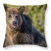 Smiling Grizzly Throw Pillow