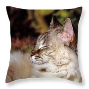 Smiling In Her Sleep Throw Pillow