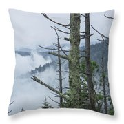 Smokey Mountain Forest No.612 Throw Pillow