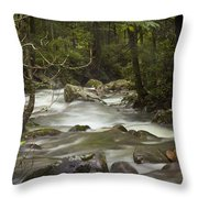 Smokey Mountain Stream No.326 Throw Pillow