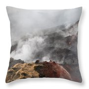 Smoking Fields Throw Pillow