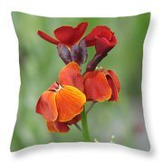 Smooth And Silky Throw Pillow