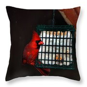Snack Before The Storm Throw Pillow