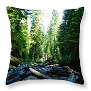 Snag On Iron Creek Throw Pillow