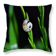 Snail On Green Grass Throw Pillow