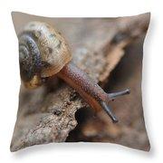 Snail's Tale Throw Pillow