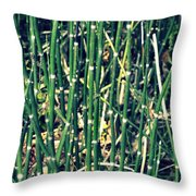 Snake Grass On The Beach Throw Pillow