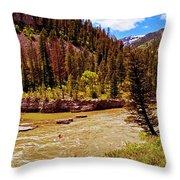 Snake River And Kayaker Throw Pillow