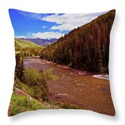 Snake River And Rafters Throw Pillow
